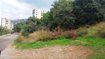 Land in Mount Lebanon - Ag-932-17 Land for Sale at Sahel Alma in a Prime location 1.100m2