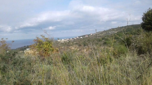 Land in Bejje - Land for Sale Maad Jbeil Area 2515Sqm