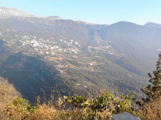 Land in Mazraat Touffah - LANDS for sale MAZRAAT AL TEFFAH (ZGHARTA) North Lebanon 800 M2