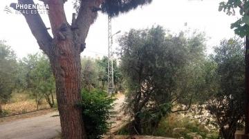 Land in Mount Lebanon - Land in Edde Jbeil - 771sqm- ارض في اده جبيل |PLS23686