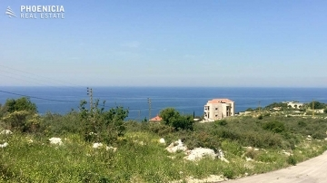 Land in North - Special land in Berbara with hot price (loan available)|PLS23024