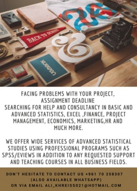 Other Classes in Other - Business And Statistical Project and Teaching Support