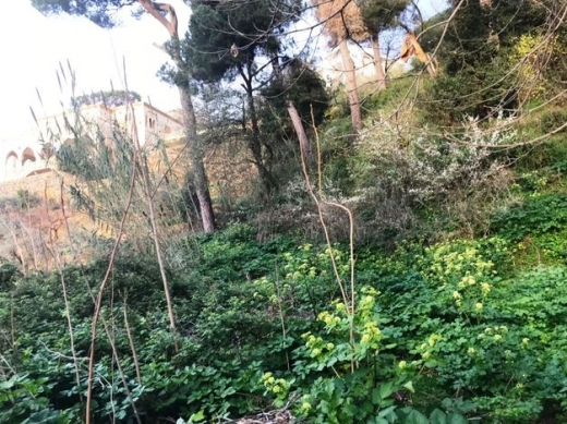 Land in Jounieh - 1750m Land for Sale at Ain Saadeh Prime location Main road