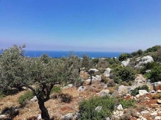 Land in Kalhat - ارض للبيع قلحات قضاء الكوره