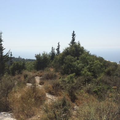 Land in okaybe - Okeiby 4 plots for sale -2 plots top hill and 2 under road- full sea view