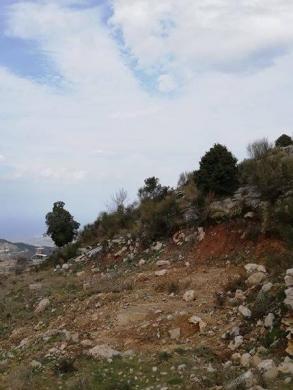 Land in Bkah Sefrine - ارض للبيع بقاعصفرين الضنيه