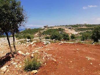 Land in Deddeh - ارض للبيع دده الكوره مشروع الحريري