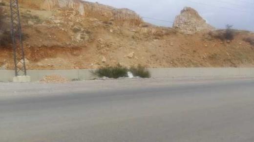 Land in Haoush el Oumara - أرض للإستثمار في عين الرهبان (قضاء زحلة)