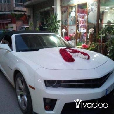 Cars & Transportation in Tripoli - سيارات للاعراس للجميع مناسبات ابتداء من 100 سياره مع زينه