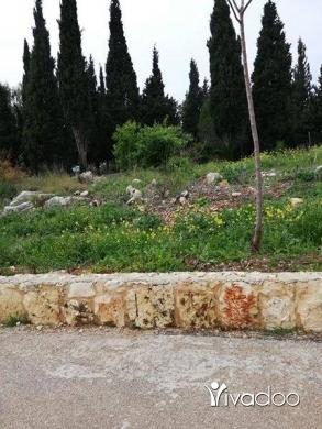 Land in Deddeh - ارض للبيع دده الكوره
