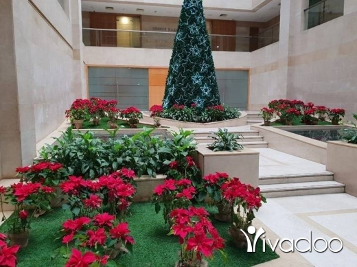 Offered in Beirut City - Office for Rent