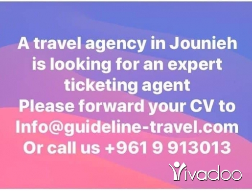Transport Planner in Jounieh - looking for an expert ticketing agent