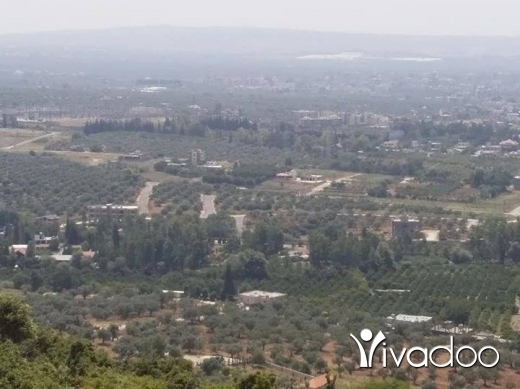 Bunglow in Zgharta - ارض للبيع مطل رائع سند اخضر سعر المتر ١٥ $