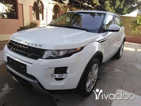 Rover in Majd Laya - Evogue mod 2014 pure prinium just arrived