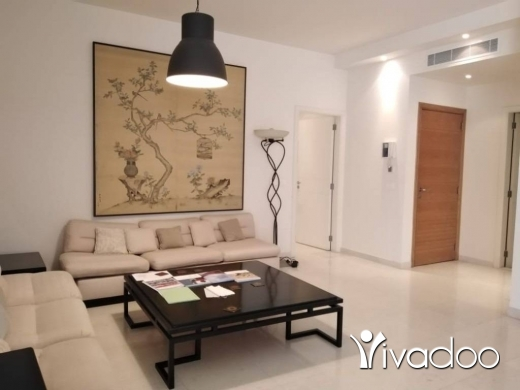 Apartments in Achrafieh -  A furnished 170 m2 apartment for rent in Achrafieh