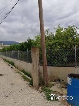 Land in Tripoli - رض للبيع مرياطه