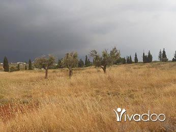 Land in Abou Samra - لمحبي الطبيعة و الهدوء، للبيع قطعة أرض صغيرة، في بكفتين، تبعد حوالي ٨ دقائق فقط من ابو سمرا