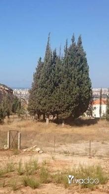 Apartments in Barsa - شقة بسعر مغري جدا طرابلس ضهر العين برسا
