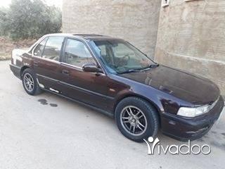 Honda in Sarafande - honda