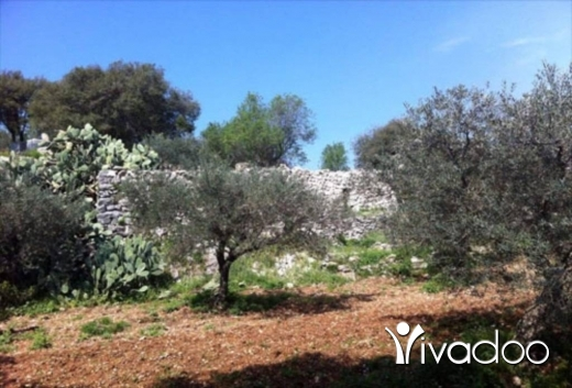 Land in Amchit - Land for Sale Ain Kfaa Jbeil Area 1450Sqm 25-50% h9+1met