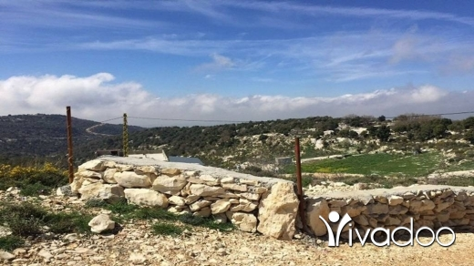 Land in Lehfed - Land for sale Lehfed Jbeil Area 915Sqm Zone ( UP ) 20-40% h9+1met