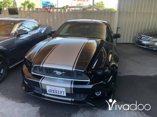 Ford in Beirut City - Ford mustang