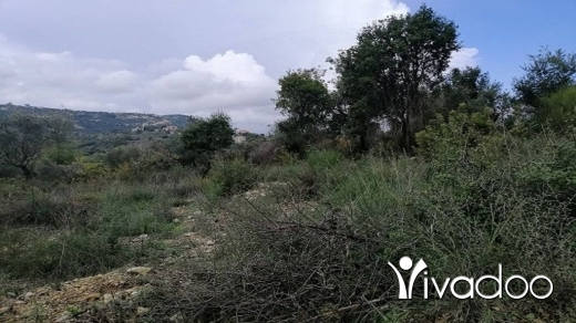 Land in Amchit - Land for Sale Ain Kfaa Area 1070Sqm Zone 25-50% h9+1met