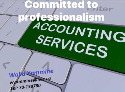 Accountant in Hazmiyeh - Accounting Services