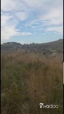 Land in Kfar Fila - ارض مفرزة للبيع كفارفيلا مساحة ١٠٠٠ متر ٢٤٠٠ سهم