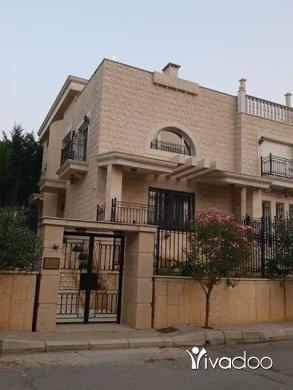 Apartments in Beirut City - للبيع فيلا فخمة جدا في عجلتون مساحة البناء 800 m + حدائق 350 m سعر مغري جدا تل 81894144