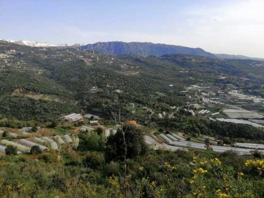 Land in Ehmej - ارض في طورزايا طريق العام  للبيع