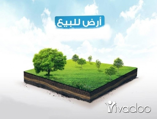 Land in Mounsef - Land for sale in Monsef
