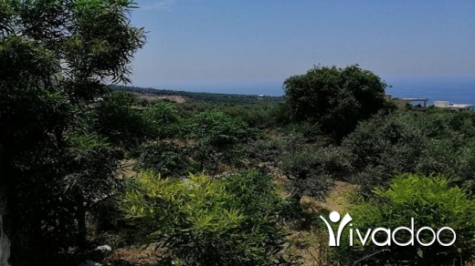 Land in Barbara - Land for Sale Berbara Jbeil Area 1107Sqm Zone ( A ) 30-50% h9+1met