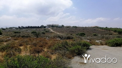 Land in Gharzouz - Land for Sale Gharzouz Near Maad Jbeil Area 1625Sqm Zone ( H3 ) 30-50% h9+1met