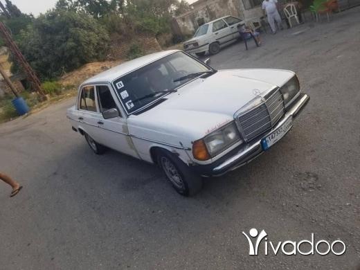Mercedes-Benz in Halba - mercedes