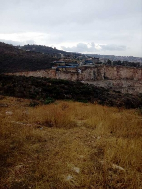 Land in Aldibbiyeh - ارض 1003م للبيع بالدبية