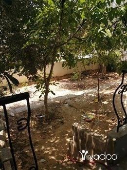 Apartments in Saida - شقه للبيع او مقايضه