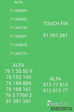 Other in Zgharta - Alfa & touch numbers