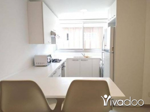 Apartments in Beirut City - A furnished modern apartment for Rent in Achrafieh