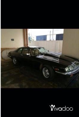 Jaguar in Beirut City - Jaguar XJS 1976