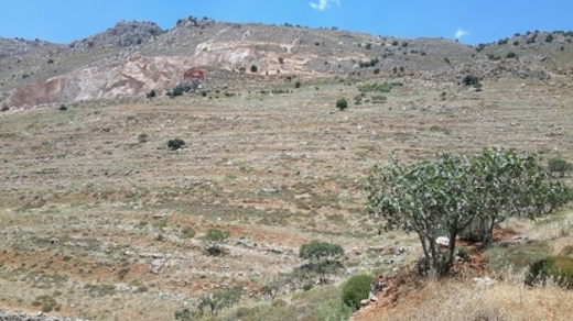 Land in Jdita - land in zahle touaite open view for sale