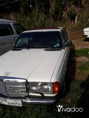 Mercedes-Benz in Akkar el-Atika - مرسيدس لف مازوت