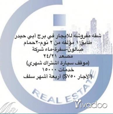 Apartments in Burj Abi Haidar - شقه مفروشه للبيع او للايجار في برج أبي حيدر(بداعي السفر)