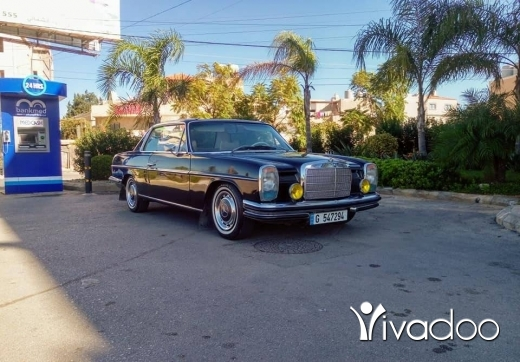 Mercedes-Benz in Saida - Mercedes 250C