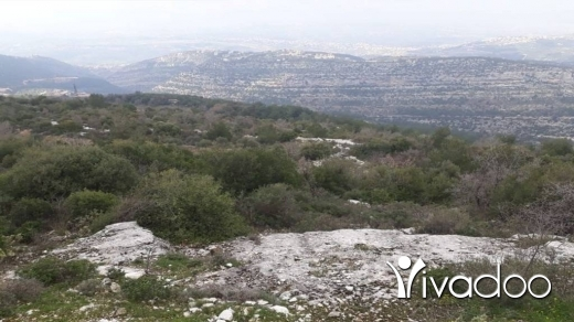 Land in Bet Kessab - Land for Sale Beit Kassab Hardine Batroun Area 1757Sqm
