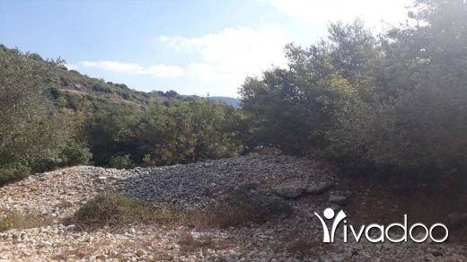 Land in Amchit - Land for Sale Ain Kfaa Jbeil Area 2007 Sqm 25% -50% h 9+1met