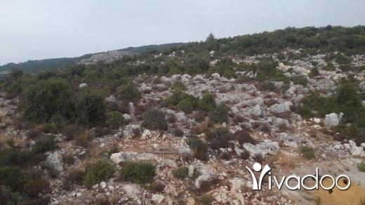 Land in Akkar el-Atika - 1600 متر في بزال عكار مربعين 40×40 مش منحدرين مطل بيجنن الطريق واصلي في حوالي 150 متر الرنج بيمشي