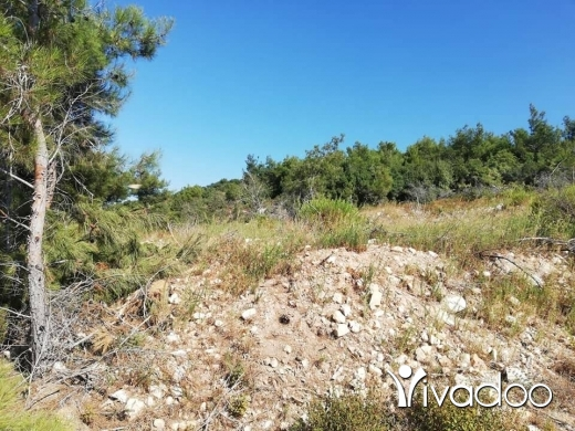 Land in Akkar el-Atika - متر في بزال عكار