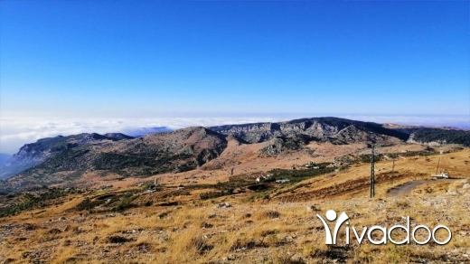 Land in Tannourine - Land for Sale Tannourine – Faouqa – ( Msateb -Ain Et Tillaje ) Area 2450Sqm.