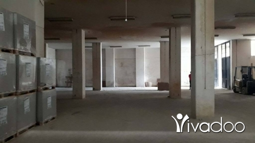Warehouse in Ain Saadeh - Warehouse For Sale in Ain Saade Industrial Area - L05012